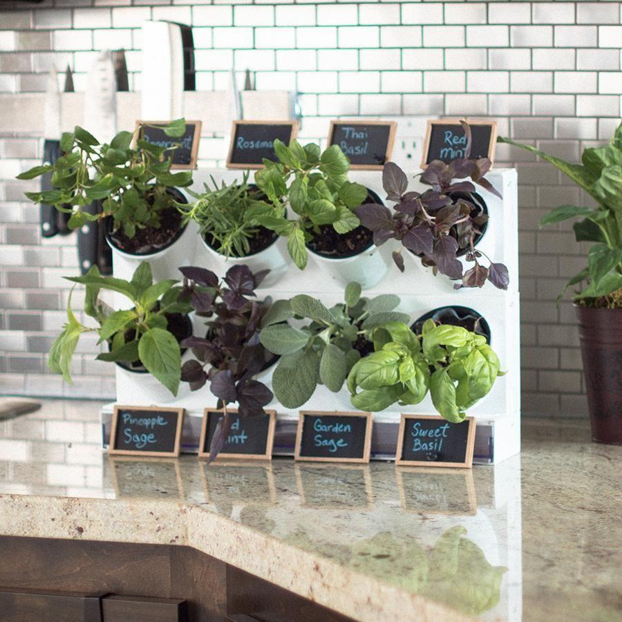 15 Indoor Herb Garden Ideas 2020 Kitchen Herb Planters We Love