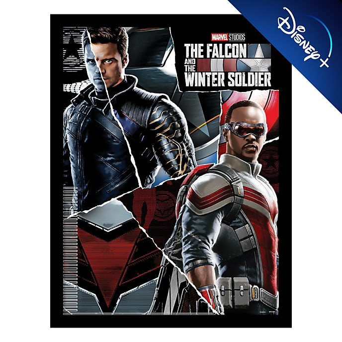 The falcon and the winter soldier framed the print