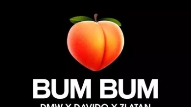 Photo of Davido ft. Zlatan Ibile – Bum Bum