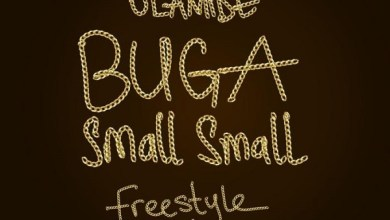Photo of Olamide – Buga Small Small (Freestyle)