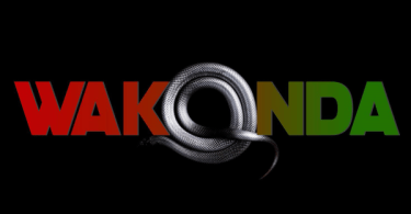 Akon Wakanda (Joanna Remix)