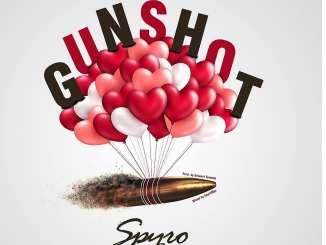 Spyro Gunshot Mp3 Download