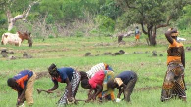 Photo of The Era of the Underdog Revolution in Africa-What Next from Now?