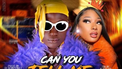 Photo of Kizzy Promise – Can You Tell Me