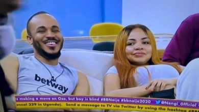 Photo of You Are Too Peaceful, I Can't Date You – Nengi Tells Ozo