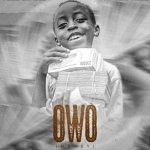 Seyi Vibez – Owo