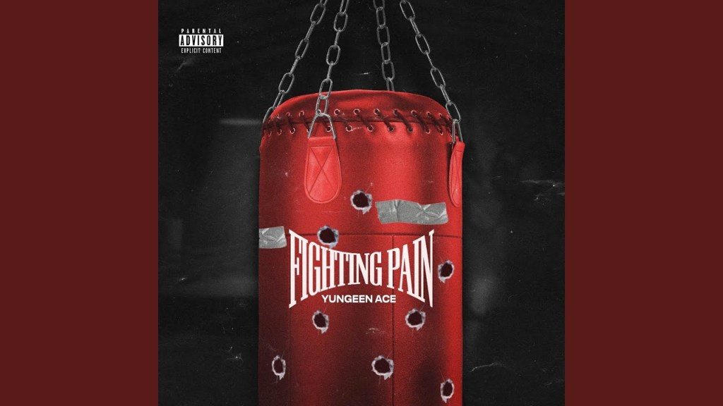 Yungeen Ace Fighting Pain