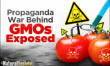 (Video)'Surprise side effects': USDA approves two new GMO potatoes
