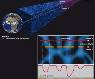 Intergalactic gas and ripples in the cosmic web