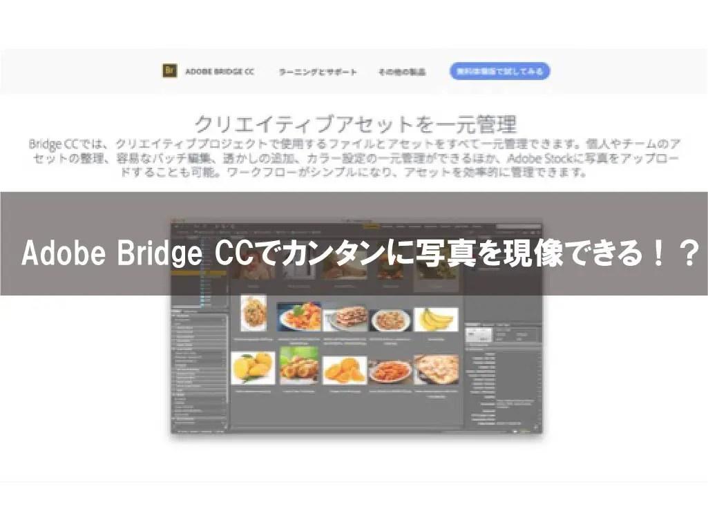 Adobe Bridge CCでカンタンに写真を現像できる!?