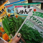 石川五エ門ネイルアートでルパン三世のキャラクターコンプリート♪「また、野菜の種を買ってしまった・・・」