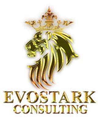 Evostark Consulting