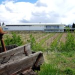 Tantalus Vineyards' Unveils BC's First LEED Winery in Okanagan Valley