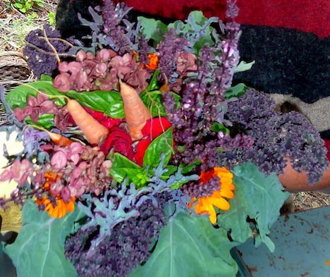 Edible Bouquet by Elaine Savoie of Hornby Island