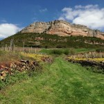 In Burgundy's Pouilly-Fuissé, it's All About the Rocks