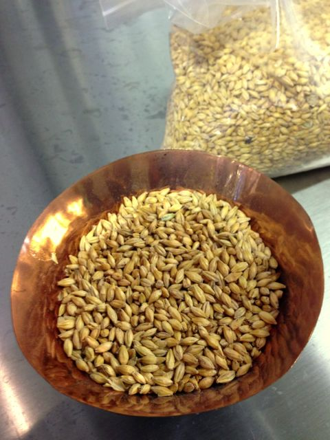 bowl of BC barley