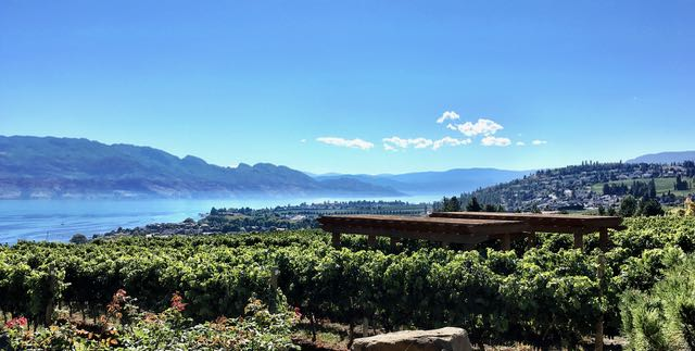 VIP Tasting, The panoramic view from Old Vines at Quails Gate
