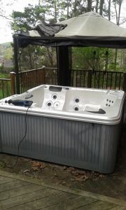 GSD Junk Hauling - Hot Tub Removal 2
