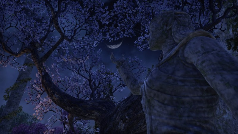 A Beautiful Night in Shimmerene
