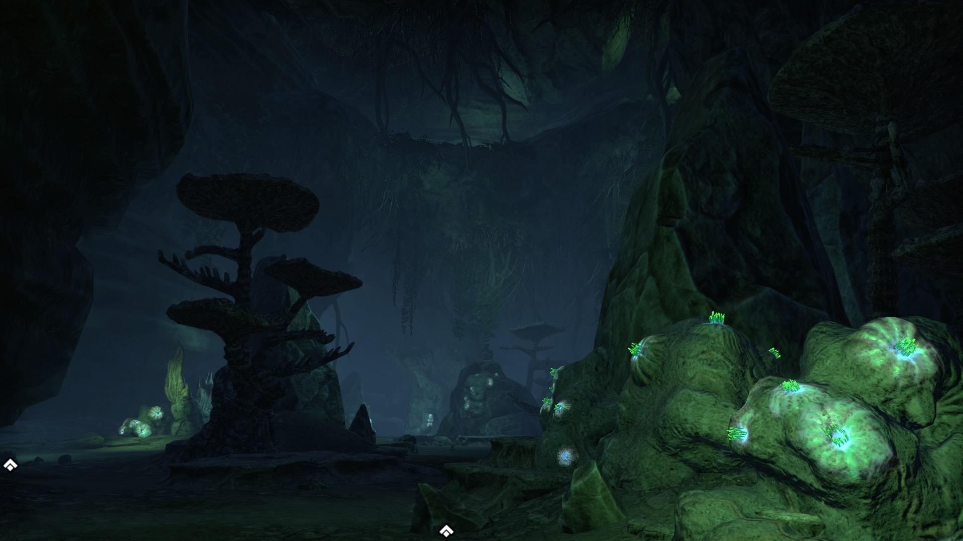 Inside the Sinkhole