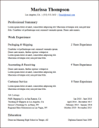 experience functional google docs resume template