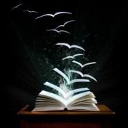 Book-open-300x298