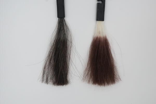 ルプルプ カラートリートメント【クチコミ2.8】で白髪が染まるかレビュー