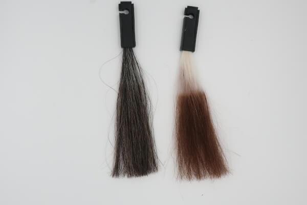 ラサーナカラートリートメント【クチコミ2.6】で白髪が染まるかをレビュー