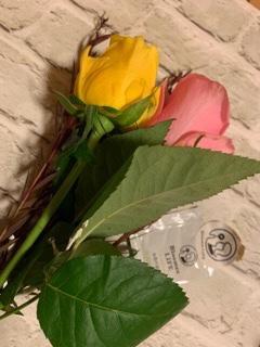 ブルーミーライフ箱からだしたお花