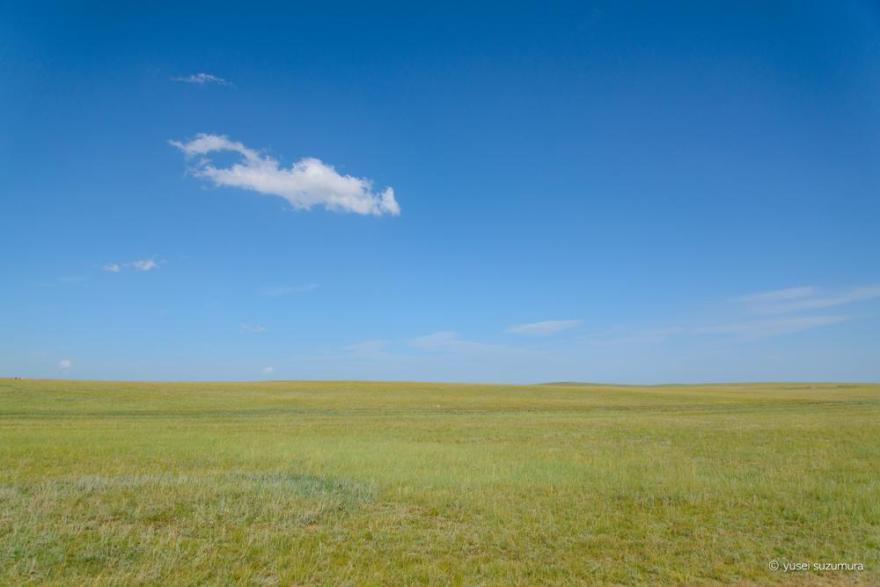 モンゴル 大草原
