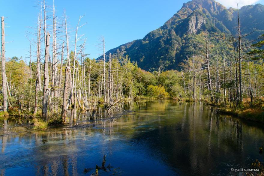 岳沢山荘からの明神池