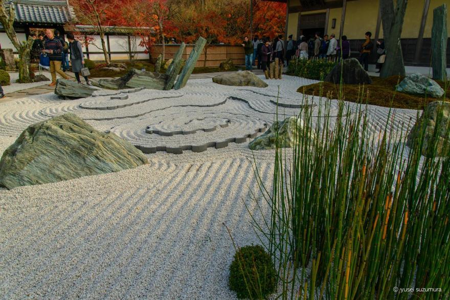 圓光寺の石庭