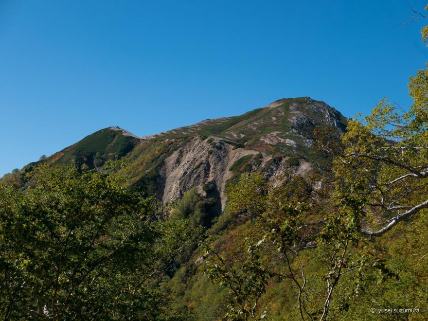 ブナ立尾根 山
