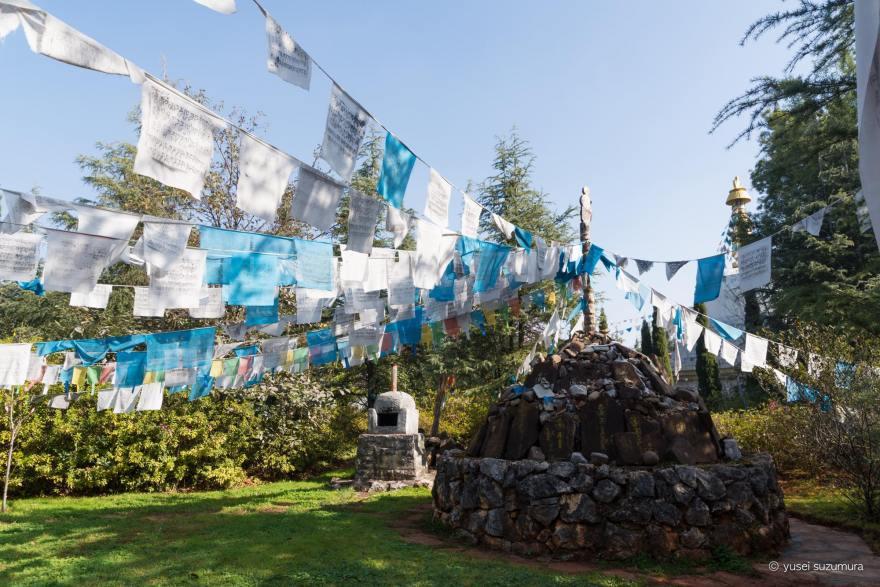 チベット民族
