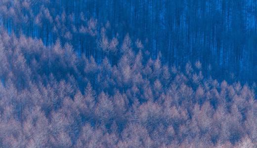 冬の霧ヶ峰高原に写真撮りに出かけた。
