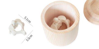 喉仏が入るひのきの骨壷の納骨容量