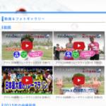 名古屋ドームリレーマラソンのホームページに掲載されてました!!