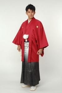 レッド紋付袴