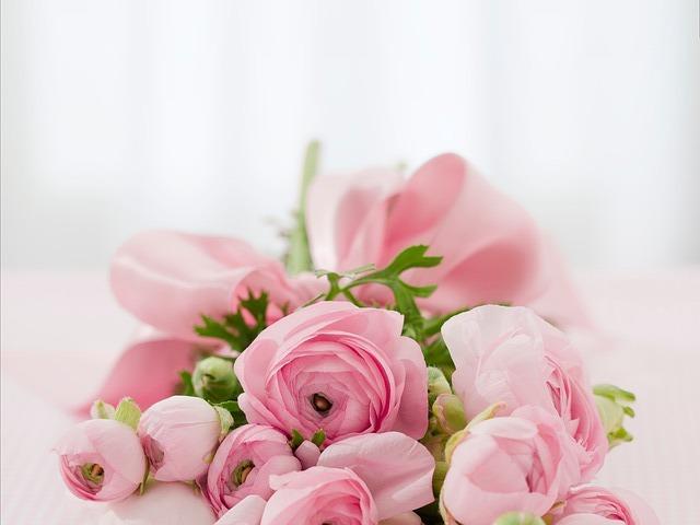 roses-142876_640