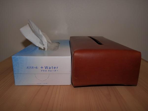 Hiroyaki leather tissue004