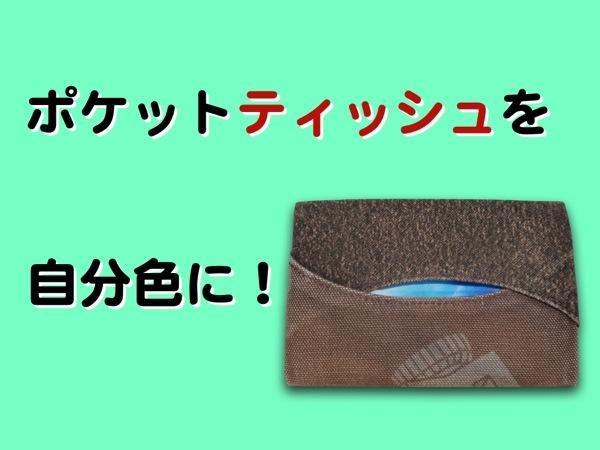 Hiroyaki pocket tissue case001