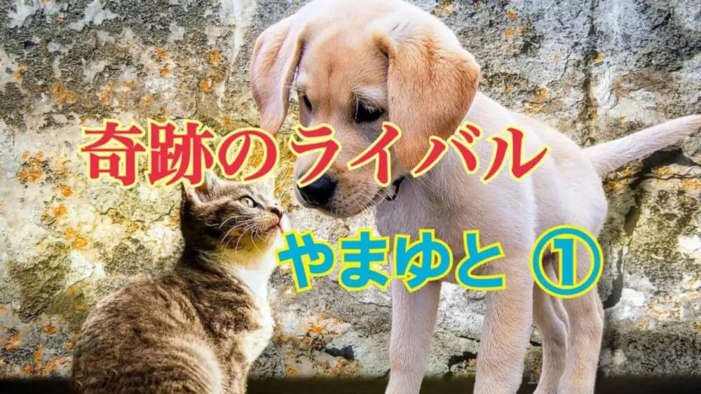 顔を寄せる子猫と子犬「奇跡のライバルやまゆと1」の文字