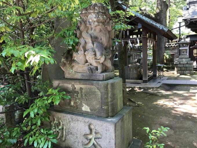 赤坂氷川神社狛犬1左