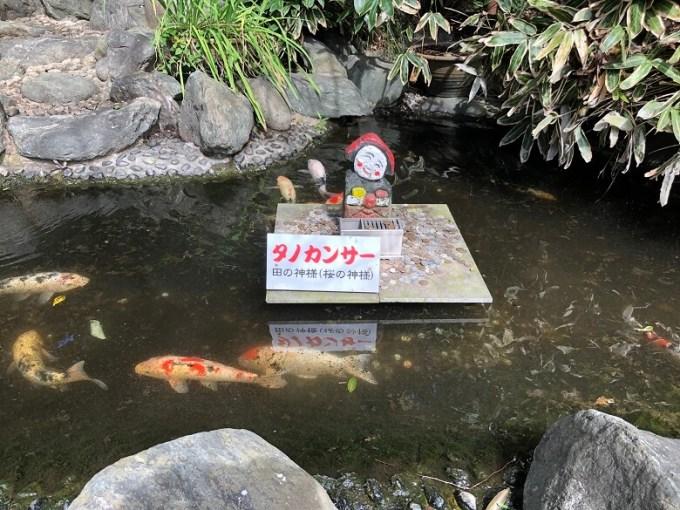 櫻木神社タノカンサー像
