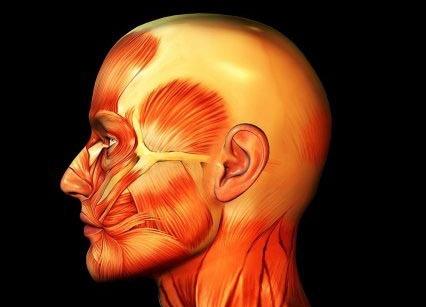 Serebrovasküler Hastalıklar Kliniği
