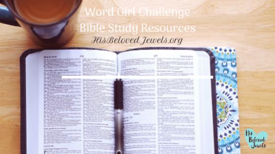 Bible Study Rescources
