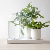 Tableau, a Self Watering Planter
