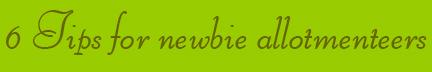 '6 Tips for newbie allotmenteers' blog post banner