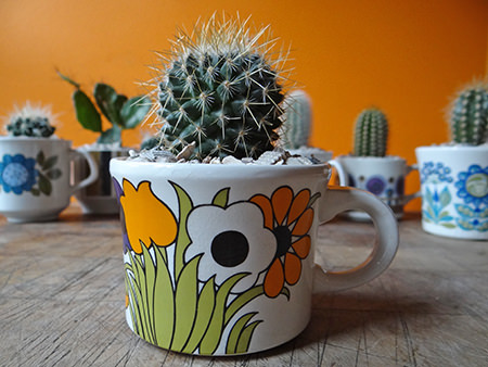 Vintage floral cup planted with a mini cactus
