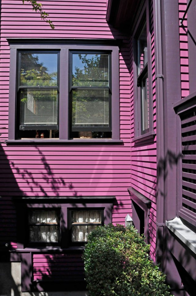 Purple painted house exterior